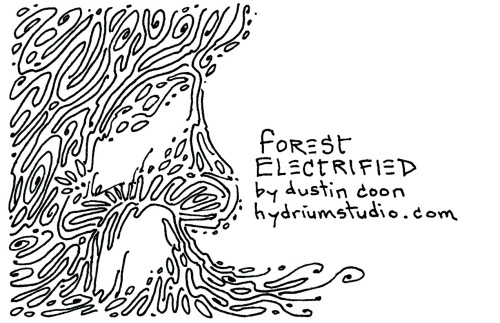 forest-electrified-small-card